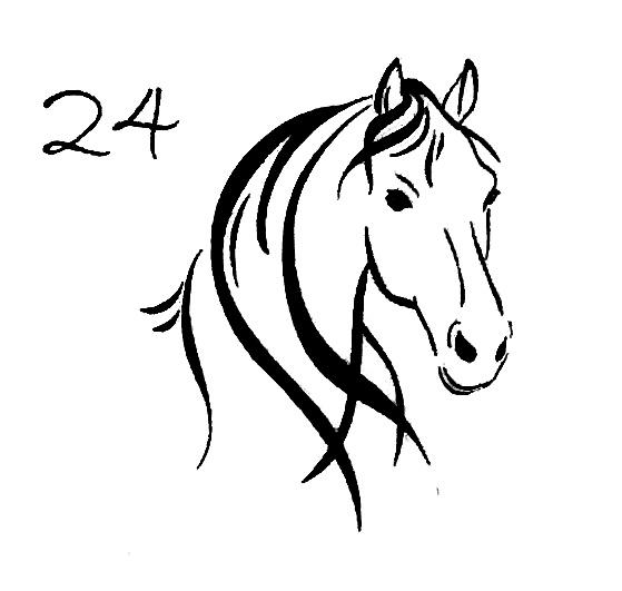 Pferdekopf 24