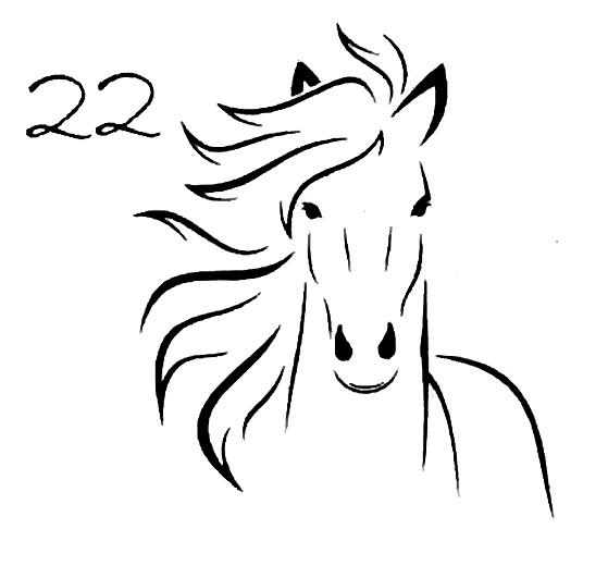Pferdekopf 22
